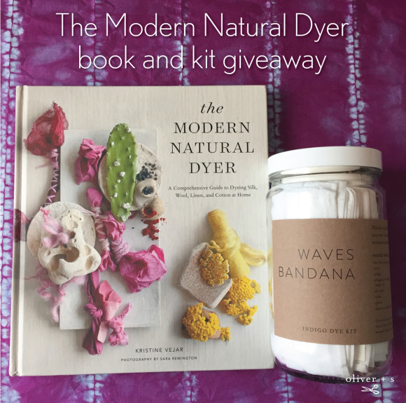 The Modern Natural Dyer book