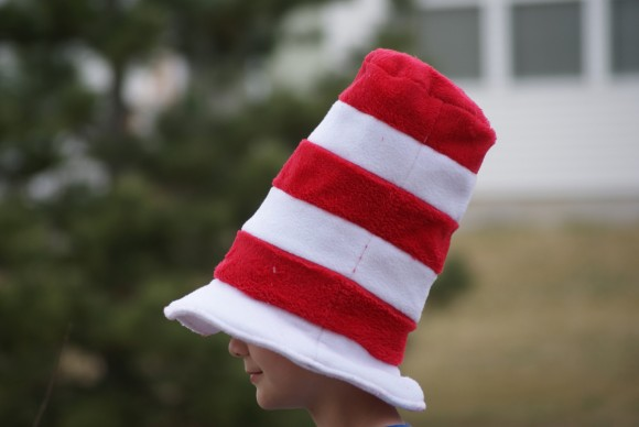 """Cat in the Hat"" hat using the Oliver + S Reversible Bucket Hat"